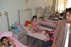 老挝新增250多例登革热病例