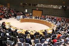 越南与联合国安理会:联合国安理会上半年的活动盘点及越南的作用和贡献