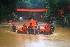 越南政府总理要求尽快克服水灾后果