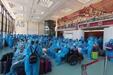 新冠肺炎疫情:把在中国台湾的230名越南公民接回国