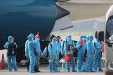 219名越南公民从赤道几内亚安全回国