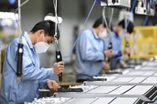 2020年前7月越南复工复产企业2.86万家 同比增长17.6%