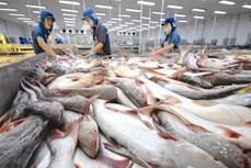 2020年前6月越南查鱼对英国出口增长7.3%