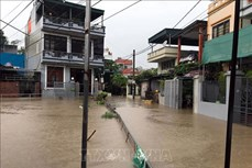 全力做好第二号台风过后救灾和恢复重建工作