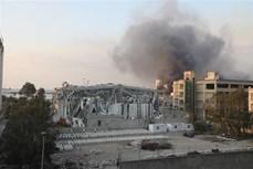 黎巴嫩贝鲁特港口大爆炸:一名越南人受伤 联合国秘书长对遇难者家属表示慰问