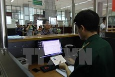 平阳省:44名外国人非法入境的消息不属实