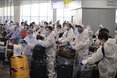 新冠肺炎疫情:在俄罗斯的逾340名越南公民安全回国