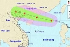 受四号台风影响 越南各地普降大雨