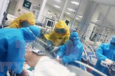 新冠肺炎疫情:全国重症和危重病例30例