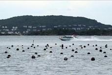 大湄公河次区域国家努力促进旅游行业复苏