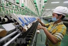 以色列媒体高度评价越南经济发展成就