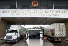 2020年前8月越南内资企业继续成为进出口活动的亮点