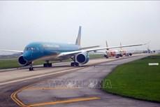 各家航空公司恢复运营至岘港往返定期航班