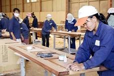 嘉莱省吸引私营经济和外国直接投资