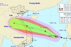越南政府总理关于应对第五号台风的通知