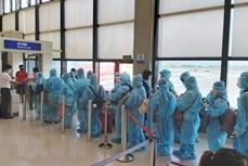 将在美国和日本的逾350名越南公民接回国