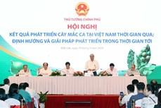 """越南政府总理阮春福:坚果必须""""后走先到"""""""