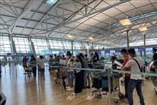 新冠肺炎疫情:在韩国的250多名越南公民安全回国