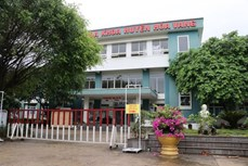 新冠肺炎疫情:岘港市和旺野战医院结束使命