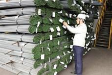 工贸部提议制定关于在越南制造商品的议定
