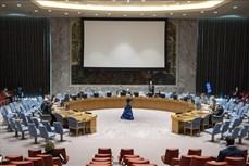 越南代表呼吁也门冲突各方应停止军事行动并恢复谈判进程