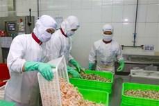 2020年越南水产品对欧盟出口额将下降20%