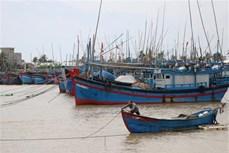 应对第九号台风:越南交通部门紧急开展台风防御工作