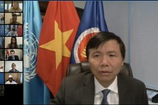 越南呼吁消除对妇女的歧视和偏见