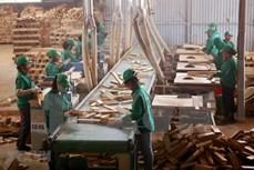越南商品出口活动在困难之中见有起色