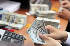11月3日上午越盾对美元汇率中间价开始上调