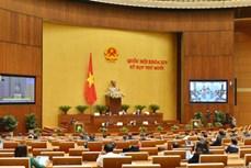 越南第十四届国会第十次会议新闻公报(第七号)