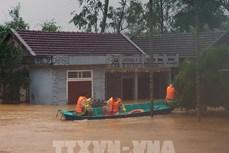 英国向越南提供50万英镑援助 用于灾后重建工作