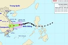 11月6日10号台风减弱为热带低压并登陆广义到庆和各省