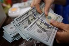 11月5日上午越盾对美元汇率中间价下调10越盾