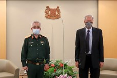 第11次越南和新加坡国防部防务政策对话在新加坡举行