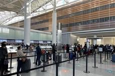 新冠肺炎疫情:将在美国和日本滞留的近360名越南公民安全接回国