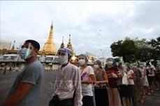 缅甸今日举行联邦议会选举