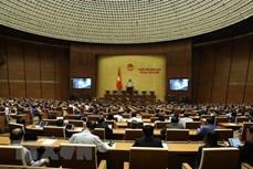 第十四届国会第十次会议:今日聚焦《道路交通安全法》和《艾滋病防治法》