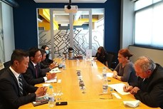 越南与南非商讨深化经贸合作商机