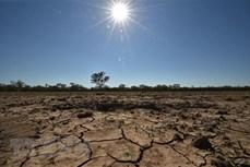 东盟与欧盟加强环境和气候变化领域的合作