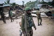 越南与联合国安理会:越南愿为非洲冲突后国家提供支持