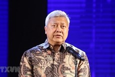 印尼驻越大使荣获越南友谊勋章 承诺继续为两国关系发展做出贡献
