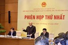 越南国家选举委员会法律文件与信息宣传工作组召开第一次会议