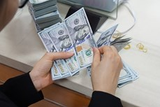 11日上午越盾对美元汇率中间价保持稳定
