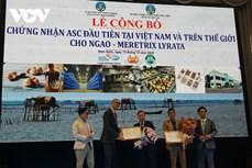 皱肋文蛤首次获得ASC认证
