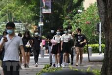 新加坡将从明年1月中旬起允许所有国家的商务旅客和官员入境