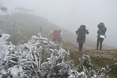 越南北部和中部以北地区继续遭遇寒冷天气 山区局部地区或将下雪