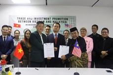 越南与马来西亚企业促进合作