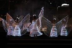 迎接2021年—神奇之夜艺术晚会在岘港市举行