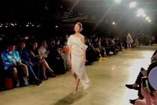 2020年越南国际时装节将吸引400名模特和歌手演员参加
